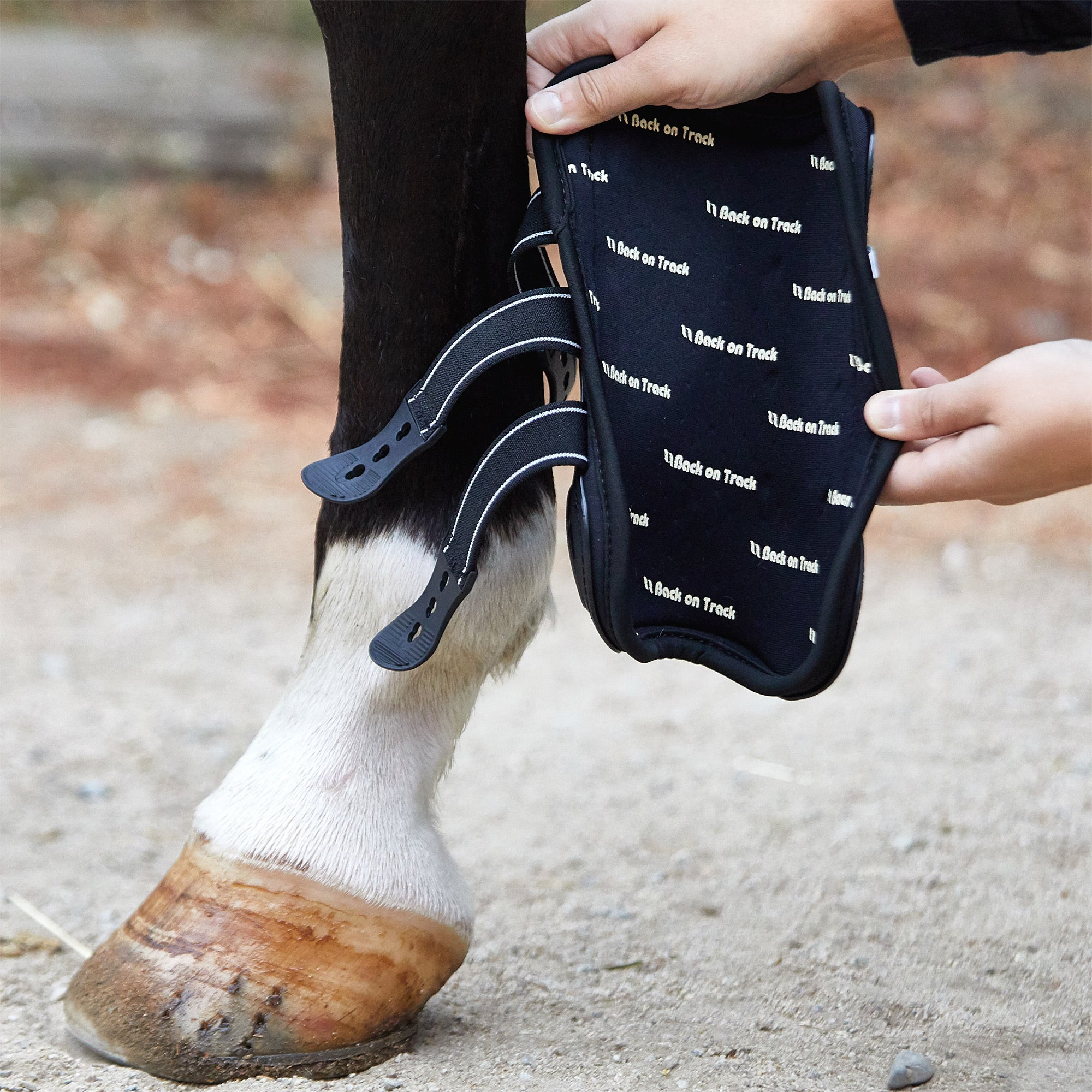back on track royal tendon boots review