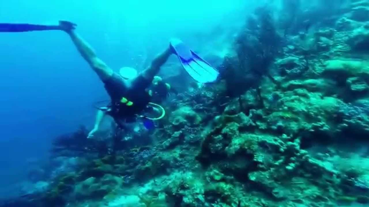 diving in st lucia reviews