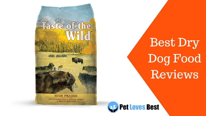 1st choice dog food review