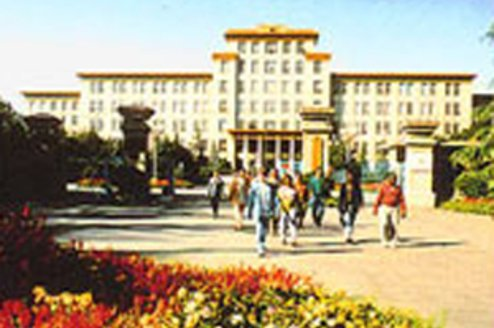 beijing language and culture university review