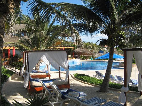 the reef playacar tripadvisor reviews