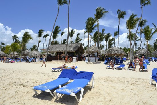 grand bahia principe punta cana reviews 2014