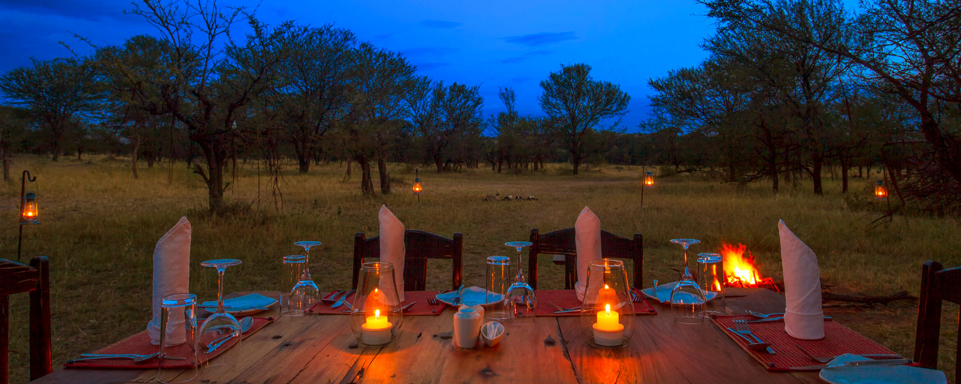basecamp tanzania camping safari review