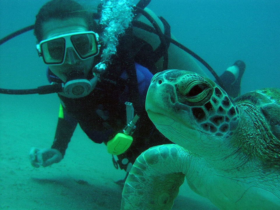 diving in costa rica reviews