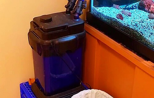 cascade 1500 canister filter review