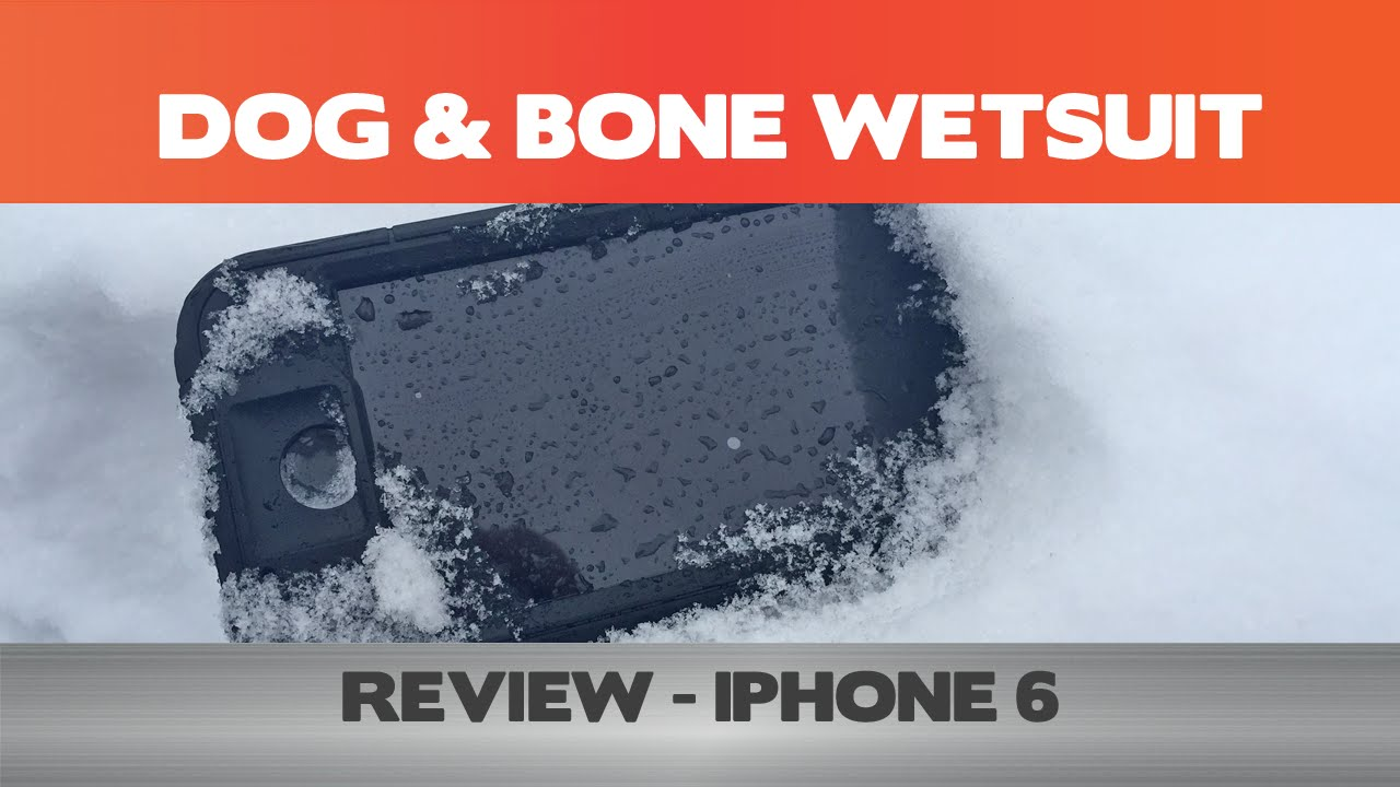 dog and bone wetsuit review