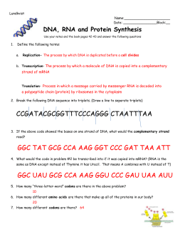 biology protein synthesis review worksheet answer key
