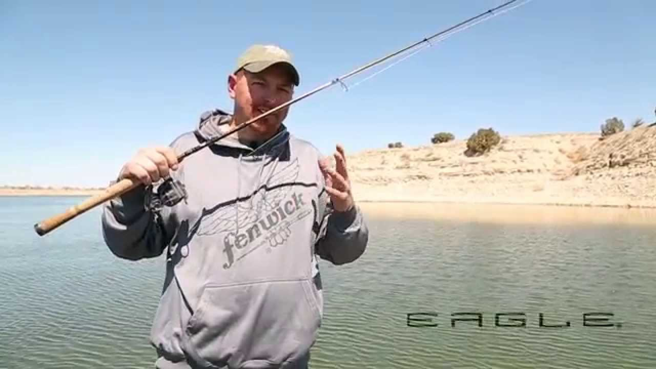 fenwick eagle spinning rod review