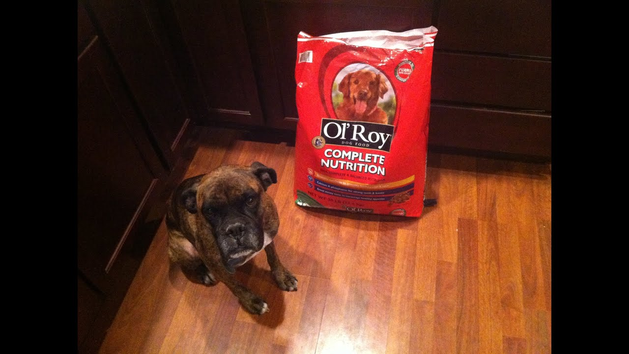 ol roy canned dog food review