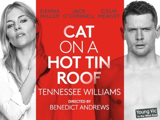 cat on a hot tin roof play review