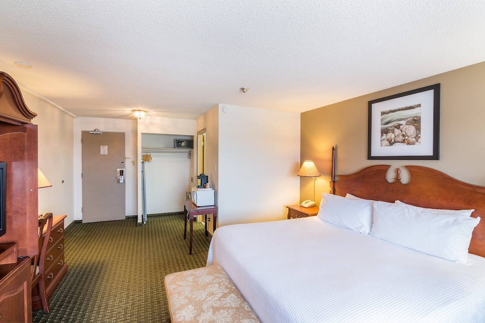 airlane hotel thunder bay reviews