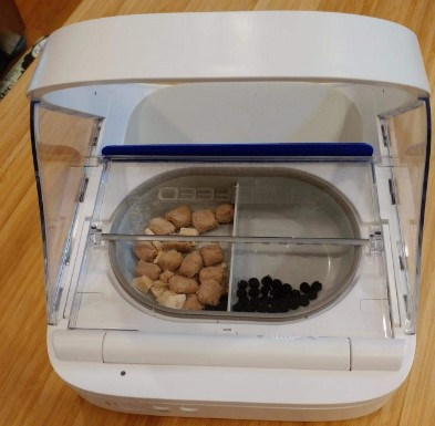 automatic wet cat food dispenser reviews