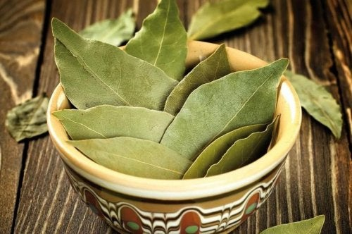 bay leaf weight loss reviews