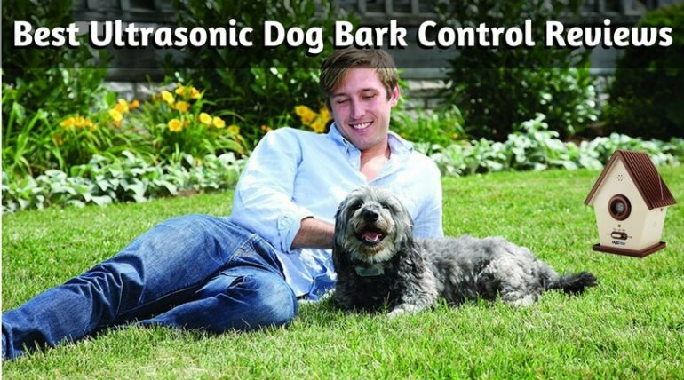 best bark control device reviews