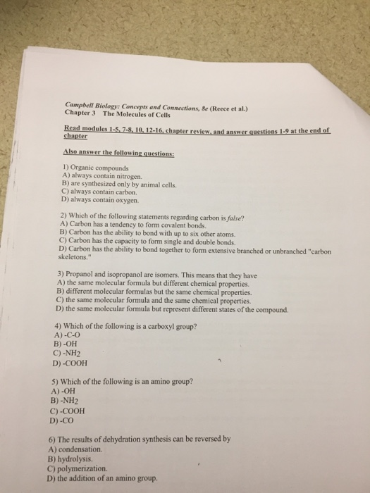 biology chapter 7 review questions