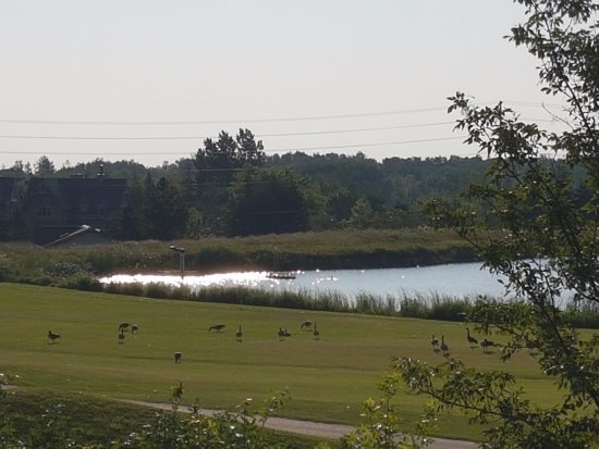 blue mountain beach ontario reviews
