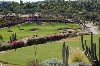 cabo del sol desert course review