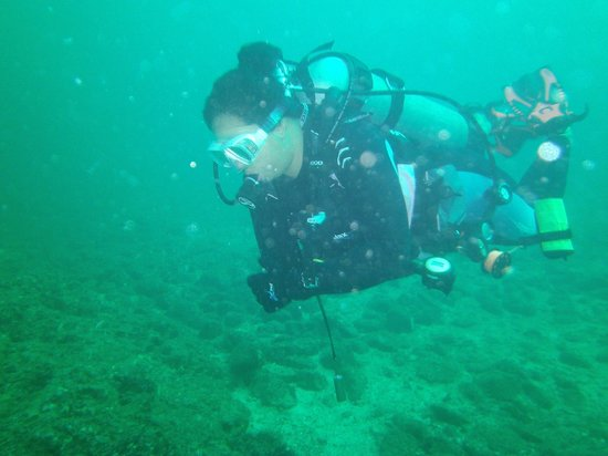 costa rica scuba diving reviews