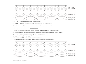 dna and protein synthesis review worksheet