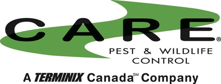 care pest and wildlife control review