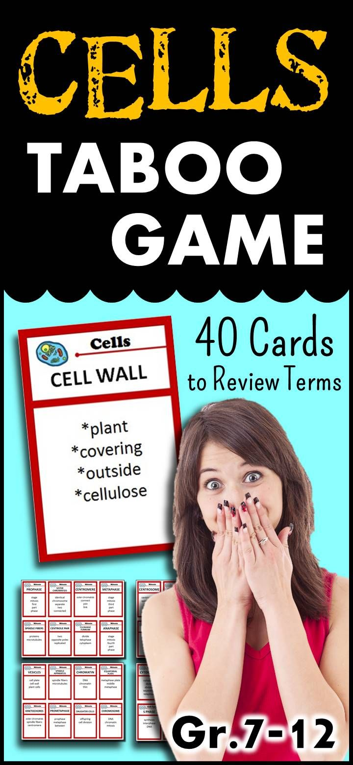 fun review games for high school