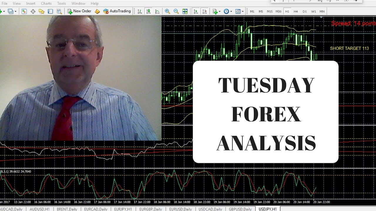 fundamental analysis for dummies review