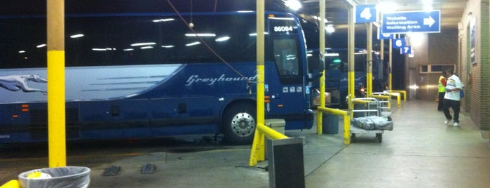greyhound boston to nyc reviews
