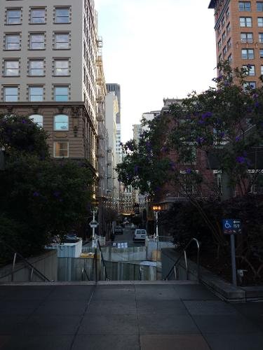 king george hotel san francisco reviews
