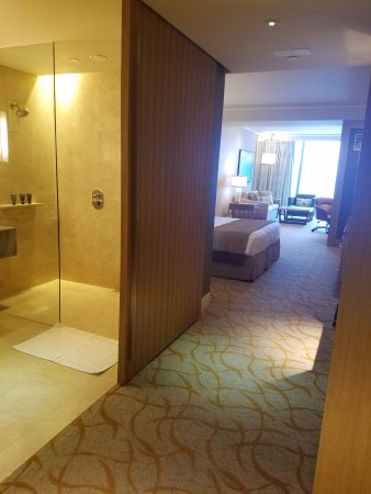 marina bay sands hotel review
