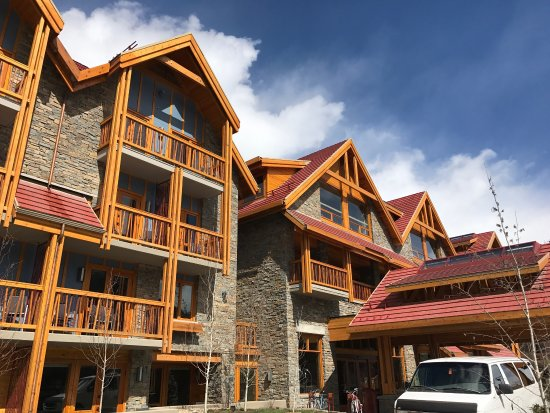 moose hotel and suites reviews